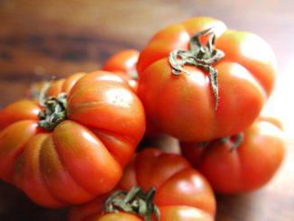 pomodoro marinda caratteristiche e ricette
